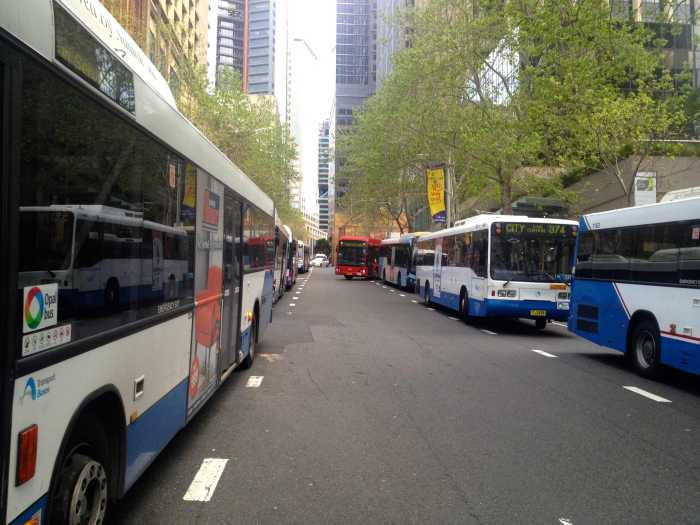 Line of buses